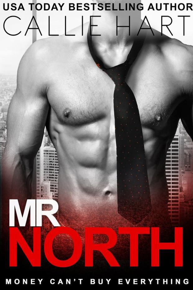 Mr North cover