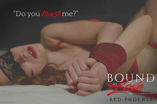 Bound By Love Teaser trust