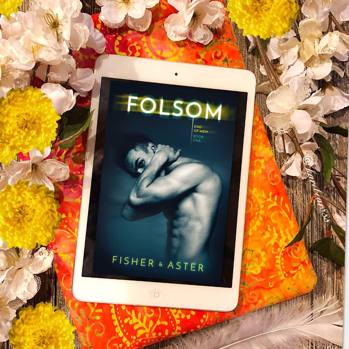 Review - Folsom by Tarryn Fisher and Willow Aster